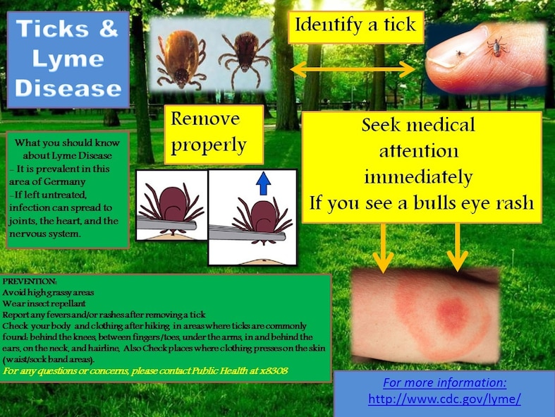 Lyme disease is an infection transmitted by the bite of certain, very small, infected ticks. Contact the 52nd Aerospace Medicine Squadron Public Health Office at DSN: 452-8308 or Commercial 0656561-8308 for questions and testing. (Courtesy photo)