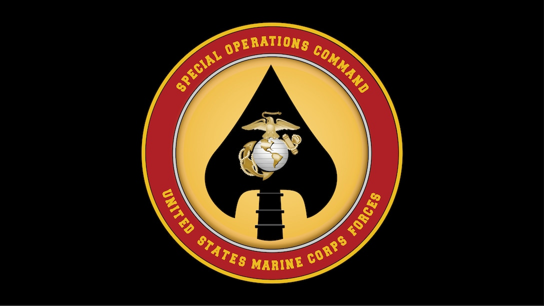 Seven Marines with U.S. Marine Corps Forces, Special Operation Command died when a U.S. Army UH-60 Blackhawk Helicopter crashed near Eglin, Florida, March 10, 2015.