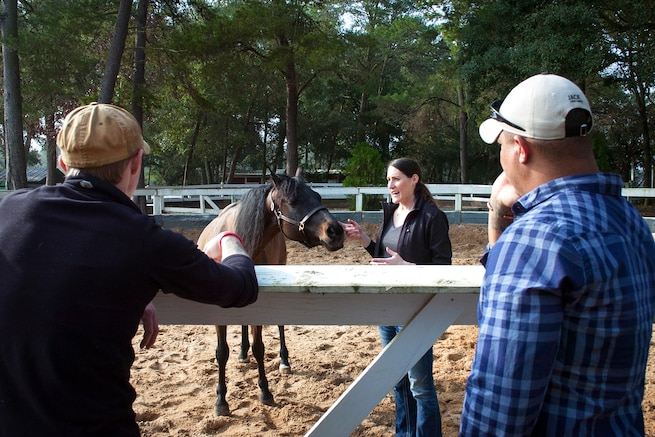 u s department of > photos > photo essays > essay view a member of the eglin air force base sand and spur riding club center