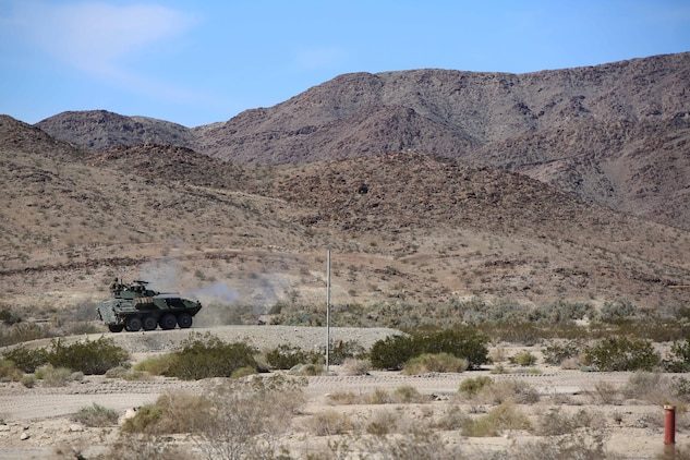 Marines with Light Armored Vehicle Platoon, Company B, Ground Combat Element Integrated Task Force, assault targets with the 25mm Bushmaster chain gun during a Marine Corps Operational Test and Evaluation Activity assessment at Range 500, Marine Corps Air Ground Combat Center Twentynine Palms, California, March 10, 2015. From October 2014 to July 2015, the GCEITF will conduct individual and collective level skills training in designated ground combat arms occupational specialties in order to facilitate the standards-based assessment of the physical performance of Marines in a simulated operating environment performing specific ground combat arms tasks. (U.S. Marine Corps photo by Cpl. Paul S. Martinez/Released)