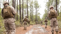 Sailors with 2nd Dental Battalion patrol a road during a counter improvised explosive device course in Holly Ridge, N.C., March 20, 2015. The sailors looked for possible IEDs on and around the dirt road, and then instructors exposed to them the IEDs placed prior to the patrol to give them a better understanding of how devices can be hidden.