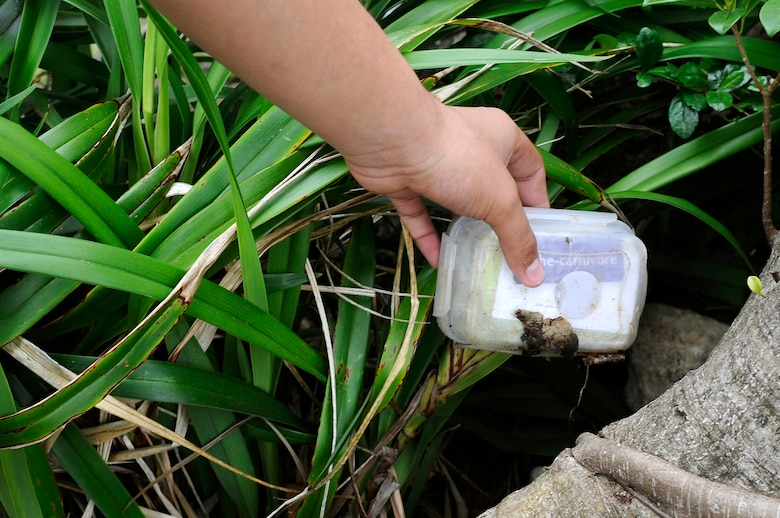 A Catholic youth group member from Kadena Air Base, Japan, finds a hidden cache during a geocaching activity near Araha Beach, Japan, March 21, 2015. Geocaching is a new century treasure hunt using GPS and clues provided on a website. (U.S. Air Force photo by Staff Sgt. Marcus Morris)