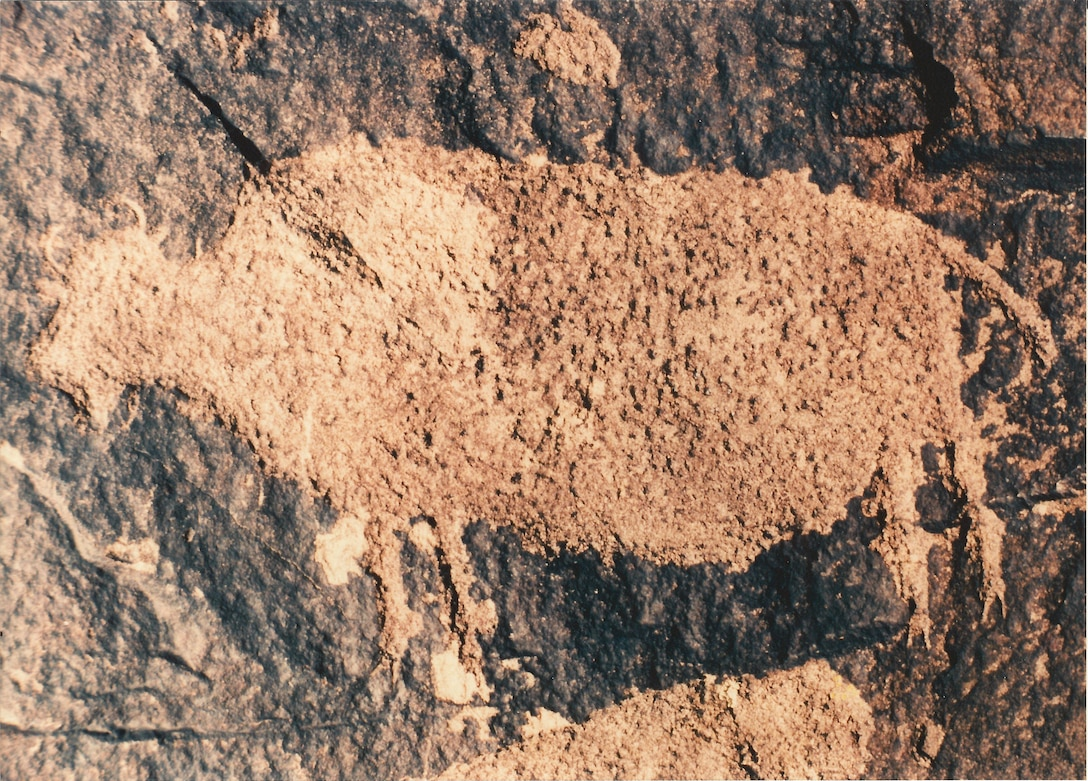 A buffalo petroglyph, one of many in southeastern Colorado, near John Martin Reservoir. Petroglyph panels and other cultural resources located on public lands belong to all Americans and are protected by the National Historic Preservation Act. Please photograph but do not touch or deface these historic properties.