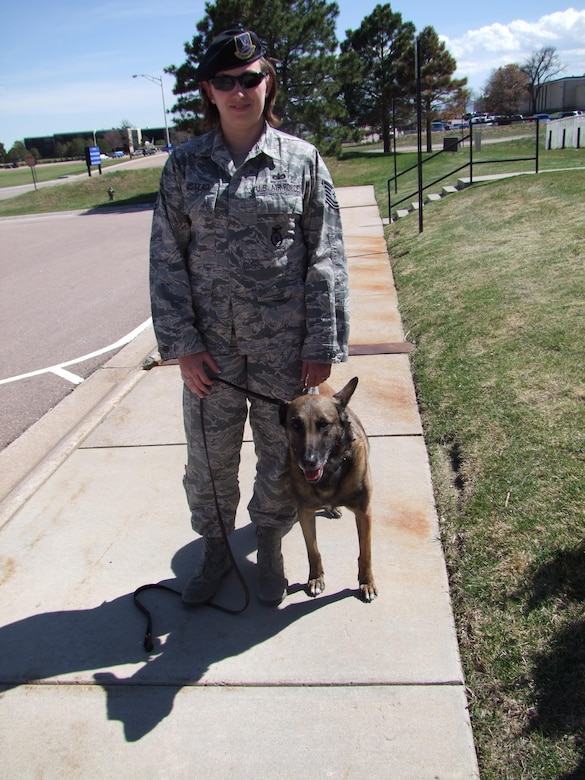 Tech. Sgt. Ashley-Marie Umstead stands with therapy dog Sato, a 5-year-old Belgian Malinois. Sato is a retired military working dog now serving as a therapy dog at the U.S. Air Force Academy, Colo. He previously served as a bomb dog for the 10th Security Forces Squadron.  (U.S. Air Force photo/Amber Baillie)