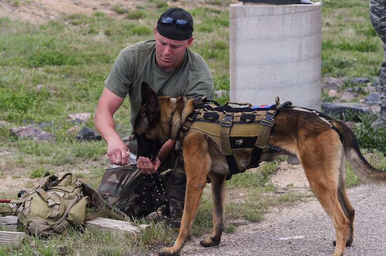 A military working dog handler provides his MWD with water during a break in the Cpl. David Sonka Memorial Competition May 3, 2015, at the 460th Security Forces training field on Buckley Air Force Base, Colo. The weekend's events were held to honor the life of Sonka, a U.S. Marine Corps Military Working Dog handler who was killed in action in Afghanistan May 4, 2013. The weekend's events included a motorcade to his grave, two memorial services, the reading of the names of all MWD and MWD handlers killed in action during Vietnam and recent years, a BBQ, and concluded with a multi-service dog handling competition. (U.S. Air Force photo by Senior Airman Phillip Houk/Released)