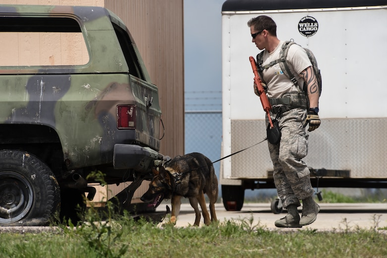 A military working dog team searches a field during the Cpl. David Sonka Memorial Competition May 3, 2015, at the 460th Security Forces training field on Buckley Air Force Base, Colo. The weekend's events were held to honor the life of Sonka, a U.S. Marine Corps Military Working Dog handler who was killed in action in Afghanistan May 4, 2013. The weekend's events included a motorcade to his grave, two memorial services, the reading of the names of all MWD and MWD handlers killed in action during Vietnam and recent years, a BBQ, and concluded with a multi-service dog handling competition. (U.S. Air Force photo by Senior Airman Phillip Houk/Released)