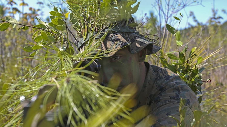 A Marine scout sniper candidate with Scout Sniper Platoon, Weapons Company, 2nd Battalion, 2nd Marine Regiment looks through the scope of his rifle during a stalking exercise in the vicinity of SR-10  aboard Marine Corps Base Camp Lejeune, North Carolina, April 22, 2015. The stalking exercise taught Marines the importance of going undetected during movement and while firing at a target. The stalking exercise was one of many conducted by Marines attending the Scout Sniper Basic Preparation Course over the course of two weeks during the month of April.