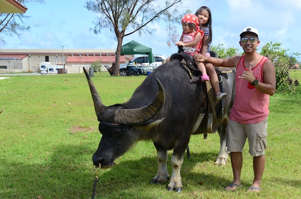 Attendees of the Memorial Day Bash ride a carabao May 25, 2015, at Andersen Air Force Base, Guam. The event included family friendly activities, such as zip lining, multiple bounce houses, food, a barbeque cook-off and a kids' race track to entertain Team Andersen during the holiday commemoration.  (U.S. Air Force photo by Airman 1st Class Alexa Ann Henderson/Released)