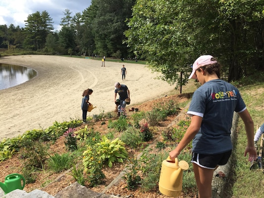 Volunteers plant and cultivate new vegetation around West Hill Dam in Massachusetts on September 19, 2015.