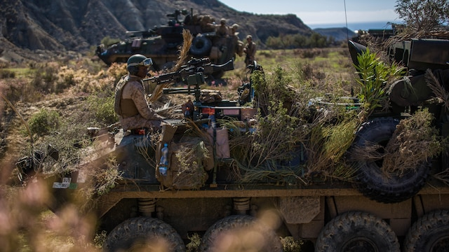 Marines with 4th Light Armored Reconnaissance Battalion, 4th Marine Division, conceal their Light Armored Vehicle during their final exercise in Trident Juncture 2015 in Almería, Spain, Oct. 30, 2015. The simulated exercise taught the Marines each other's strengths and weaknesses, allowing them to seek improvement as well as build interoperability among the warfighters.