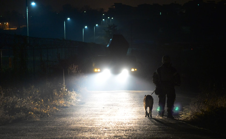 A Military Working Dog and its handler walk the perimeter of Osan Air Base, Republic of Korea, Nov. 4, 2015, in support of exercise Vigilant Ace 16. Military Working Dogs, with their acute senses, are used to man listening and observation posts in search of infiltration attempts at remote locations around the base. Roughly 16,000 U.S. personnel will participate in the annual peninsula-wide exercise taking place at eight different air bases across the ROK. (U.S. Air Force photo/Staff Sgt. Amber Grimm)