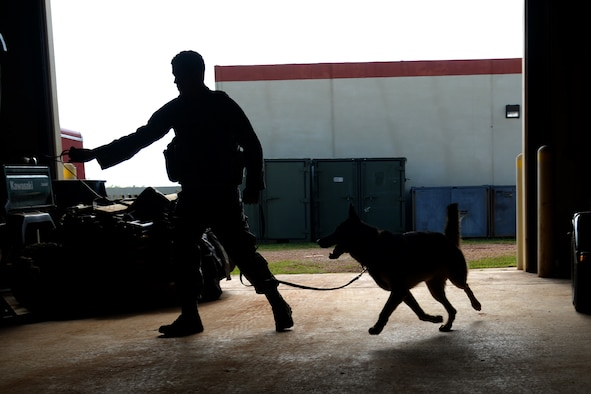 Staff Sgt. Eric Serviss, 36th Security Forces Squadron dog handler, and his military working dog Johny search a warehouse for illicit substance training aids Oct. 27, 2015, at Andersen Air Force Base, Guam. Andersen has one of the largest kennels out of the entire Air Force. (U.S. Air Force photo by Airman 1st Class Alexa Ann Henderson/Released)