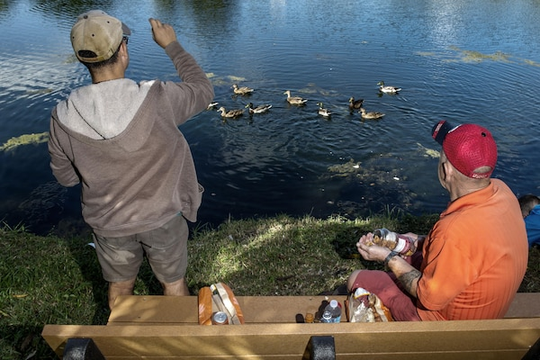 "Army veteran Manuel ""Al"" Alcantara, left, and Marine Corps veteran Jim Alderman feed ducks at the end of a therapy day at the inpatient post-traumatic stress disorder clinic at the Bay Pines Veterans Affairs Medical Center in Bay Pines, Fla., Oct. 29, 2015. DoD photo by EJ Hersom"
