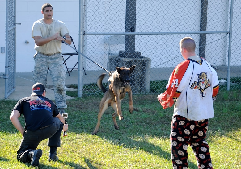 Senior Airman Michael Hitchens, 14th Security Forces Squadron Military Working Dog handler, and MWD Ooleg challenge Staff Sgt. Karl Stefanowicz, 14th SFS Kennel Master, simulating as a suspect while Scott Clark, High Drive K-9 owner, records the situation during a training event Nov. 10 at Columbus Air Force Base, Mississippi. The training demonstration highlighted the MWD team's members, handlers and dogs alike, in scenarios where the team would have to deploy their skills. (U.S. Air Force photo/Elizabeth Owens)
