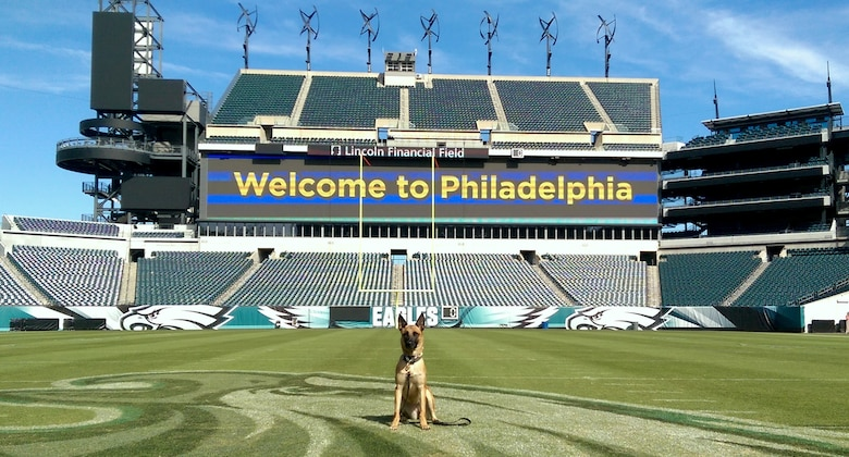 Military Working Dog Nnora from Columbus Air Force Base, Mississippi, sits in the Lincoln Financial Field in Philadelphia, Pennsylvania. Nnora and her handler were tasked to provide canine security for the 2015 World Meeting of Families where Pope Francis was set to visit from Sept. 22 – 28. While in the city, Nnora took to some local attractions to include a private tour of the field while it was closed. (Courtesy photo)