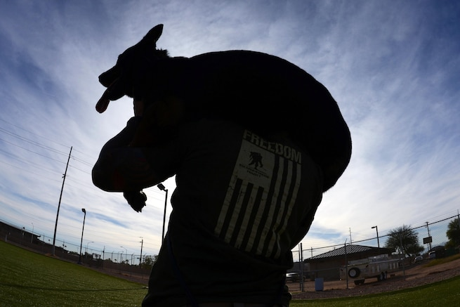 Air Force Staff Sgt. Justin Gonzalez carries military working dog Rango on Luke Air Force Base, Ariz., Nov. 18, 2015. Gonzalez is a military working dog handler with the 56th Security Forces Squadron. Military dog handlers train to make sure they can carry both a full ruck sack and their dog in the event of an injury or if the dog becomes too tired to move. U.S. Air Force photo by Senior Airman James Hensley