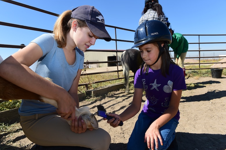 A child from Buckley Air Force Base cleans a horse's hoof Sept. 26, 2015, at Urban Farm in Stapleton, Colo. Urban Farm hosted Buckley families, providing them with a tour of the farm as well as an opportunity to interact with the animals. (U.S. Air Force photo by Airman 1st Class Luke W. Nowakowski/Released)