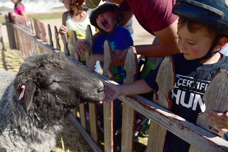 A child from Buckley Air Force Base pets a sheep Sept. 26, 2015, at Urban Farm in Stapleton, Colo.  Urban Farm hosted Buckley families, providing them with a tour of the farm as well as an opportunity to interact with the animals. (U.S. Air Force photo by Airman 1st Class Luke W. Nowakowski/Released)