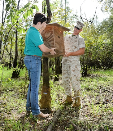 Staff Sgt. Jeffrey Chorn, equipment specialist, Marine Corps Systems Command, assists Julie Robbins, natural resources manager, Marine Corps Logistics Base Albany, in hanging a duck box aboard the base, Oct. 1.