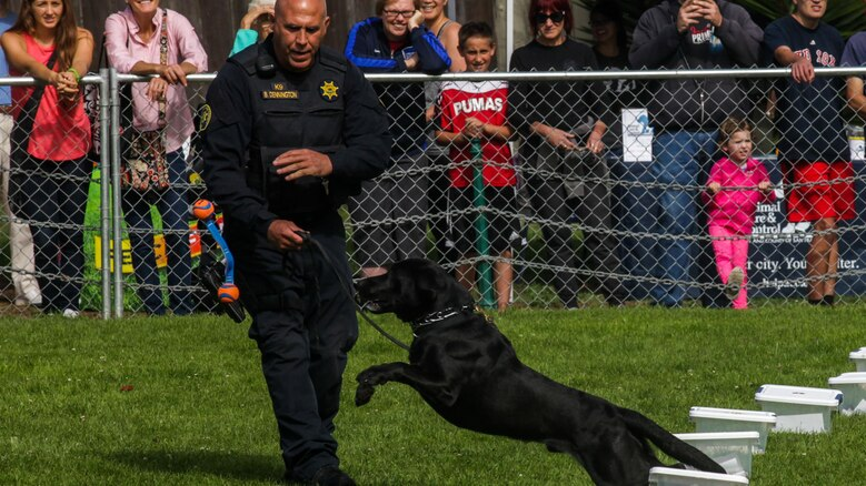 The San Francisco Sheriff's Department demonstrates their dogs ability to search and locate bomb components and drugs during the Bark at the Park event Oct. 10, as part of San Francisco Fleet Week 2015. SFFW 15' is a week-long event that blends a unique training and education program, bringing together key civilian emergency responders and Naval crisis-response forces to exchange best practices on humanitarian assistance disaster relief with particular emphasis on defense support to civil authorities.
