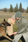 U.S. Air Force Staff Sgt. Carey Tignor, a 354th Security Forces Squadron military working dog (MWD) trainer, works with MWD Zzaryn during his shift Oct. 13, 2015, at Eielson Air Force Base, Alaska. Tignor said his favorite part of the job is when he is able to get out and train with the dog teams. (U.S. Air Force photo by Senior Airman Peter Reft/Released)