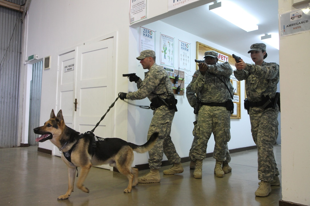 U.S. Army Reserve Military Police Soldiers from the 363rd Military Police Company out of Grafton, W.V., participate in a building-clearance exercise alongside U.S. Army military working dogs and handlers, Sept. 30, 2015, on Camp Bondsteel, Kosovo. The U.S. Soldiers are currently deployed to Kosovo with Multinational Battle Group-East, part of NATO's KFOR peace support mission. The day's training was conducted to ensure the military police teams are familiar with military working dog procedures while responding to active-shooter or explosive ordnance situations. (U.S. Army photo by Sgt. Erick Yates, Multinational Battle Group-East)