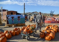 Tapia's Pumpkin Patch in Rosamond, California, donated around 65 pumpkins to the 412th Security Forces Squadron Oct. 28 for their children's Halloween party to be held Oct. 30 at the Chapel 1 Annex. (U.S. Air Force photo by Rebecca Amber)