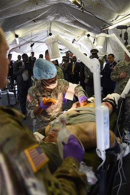 African Partnership Flights Surgeon General Symposium attendees watch a field care condition demonstration at Ramstein Air Base, Germany, Aug. 25, 2015. This event focused on strengthening U.S. strategic partnerships with leading nations in Africa to enhance regional cooperation and interoperability. (U.S. Air Force photo by Master Sgt. Charlene M. Spade/released)