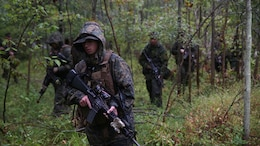 Marines with Co. C, 1st Battalion, 25th Marine Regiment, 4th Marine Division, Marine Forces Reserve, and members of the Canadian Army Royal Hamilton Light Infantry, Wentworth Regiment, conduct patrols at Evangola State Park, New York, during exercise Lake Effect, Sept. 12, 2015. The Canadians divided up among the Marine platoons to strengthen the interoperability amongst the services and learn new training techniques and tactics.