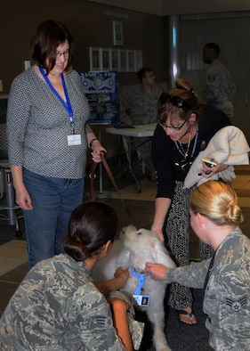 WRIGHT-PATTERSON AIR FORCE BASE, Ohio – Linda Pearson, a Miami Valley Pet Therapy Association member, speaks to three National Air and Space Intelligence Center (NASIC) employees at NASIC Wednesday, Sept. 16, 2015. Pearson introduced Bear, a 12-year-old therapy dog, and told the employees about his training requirements to be a certified pet therapy dog. The MVPTA makes regular stops at various locations around the base. (U.S. Air Force photo illustration by Staff Sgt. Marianne E. Lane)