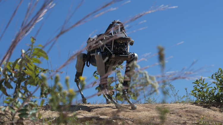 """Spot"", a quadruped prototype robot, walks down a hill during a demonstration at Marine Corps Base Quantico, Va.,Sept. 16, 2015. Employees of the Defense Advanced Research Projects Agency trained Marines from the Marine Corps Warfighting Lab how to operate ""Spot""."