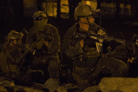 Marine Raiders with 1st Marine Raider Battalion, U.S. Marine Corps Forces, Special Operations Command, transition out of the water during a simulated underwater assault force night-raid in Los Angeles, California, Sept. 3, 2015. Training such as this is conducted to meet Special Operations Forces dive requirements and to enhance the understanding, planning and operational considerations when working in a joint operational environment with both special operations and conventional Marine Corps forces.
