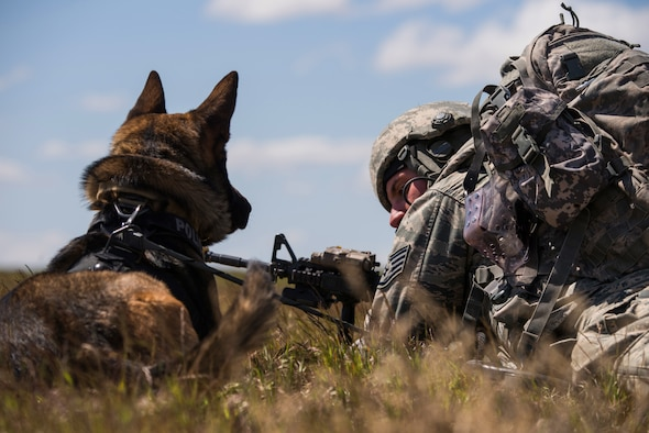 Staff Sgt. Joshua Rettschlag, 366th Security Forces Squadron military working dog handler, talks to his dog Onur during the Gunfighter Flag 15-2 exercise at the Saylor Creek Range, Idaho, April 15, 2015. When deployed, military working dogs provide tracking and detection information to their handlers during missions. (U.S. Air Force photo by Airman Connor J. Marth/RELEASED)