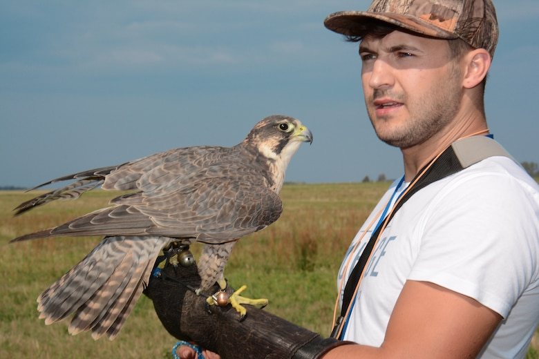 Kamil Domanski, a falconer, holds up a falcon as part of the Bird/Wildlife Aircraft Strike Hazard prevention program at Lask Air Base, Poland, Sept. 14, 2015. Domanski assists the base's BASH program to reduce any collision between wild birds and aircraft, which can result in millions of dollars in damage each year. (U.S. Air Force photo by Master Sgt. Paul Gorman/Released)