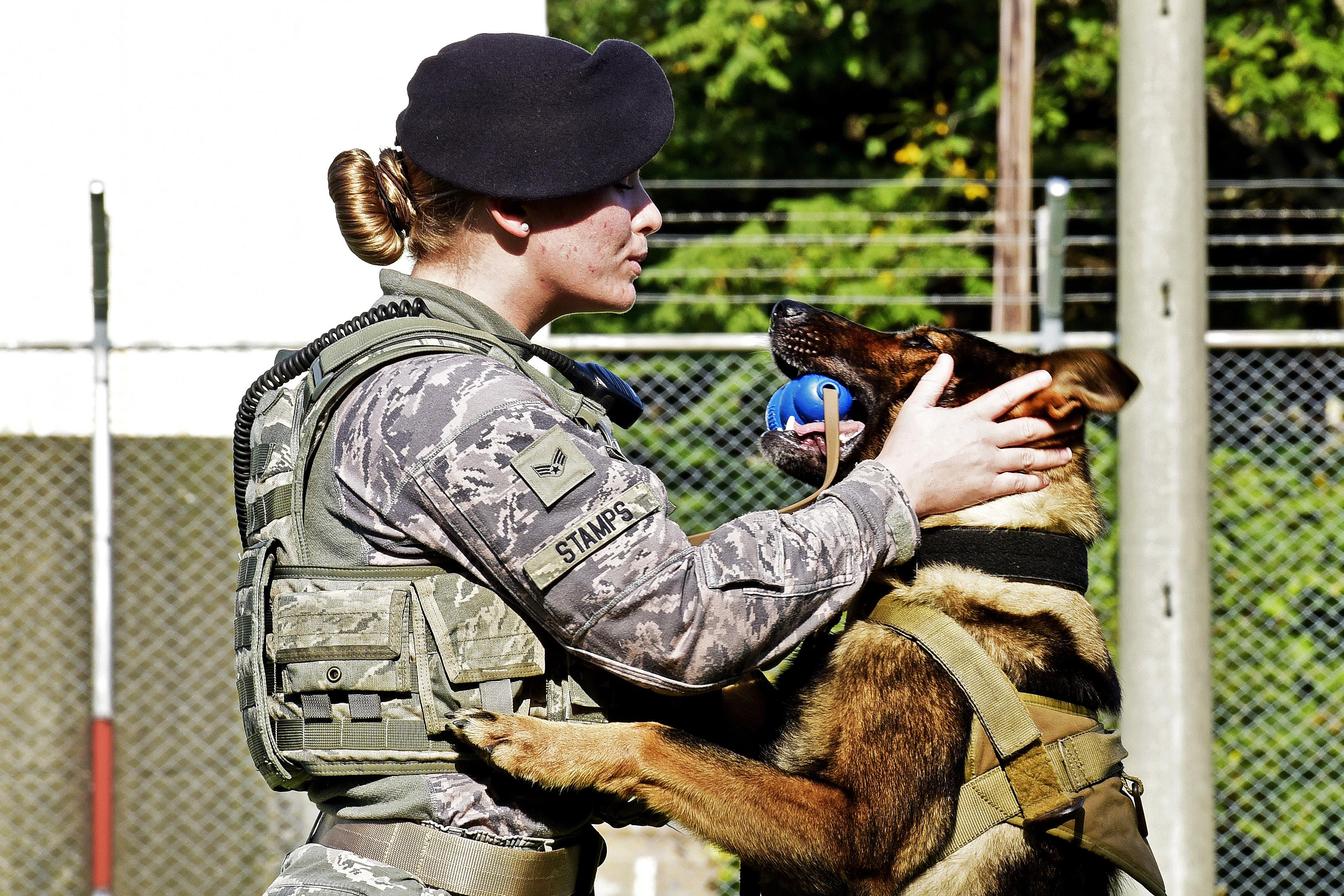 Face Of Defense Airman Takes Path To K 9 Handler Career