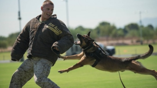 Sgt. Derek Patrick, a military working dog trainer from Marine Corps Base Camp Pendleton, demonstrates the capabilities of his military working dog at the fields behind the University of Phoenix Stadium at Glendale, Arizona, Sept. 11, 2015. The demonstration was part of Marine Week Phoenix, which allows the Marine Corps to showcase its traditions, history, and values.