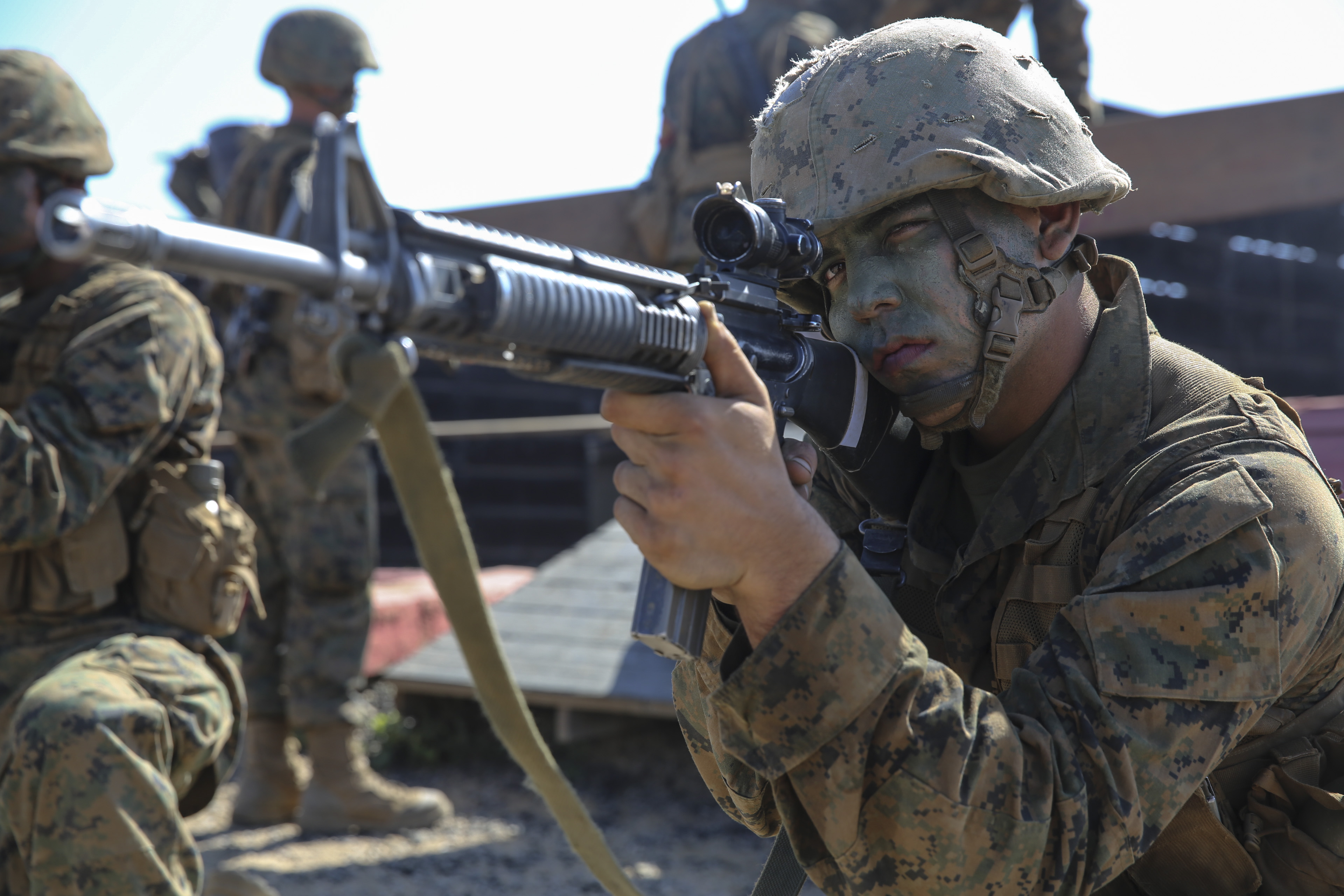 marine corps recruit training a look back essay Marine corps recruit forum ask a marine nrotc essays the naval reserve officer training corps would send a copy of the essays to your oso for them to look.