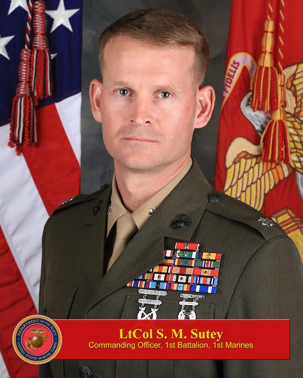 Commanding Officer, 1st Battalion, 1st Marines
