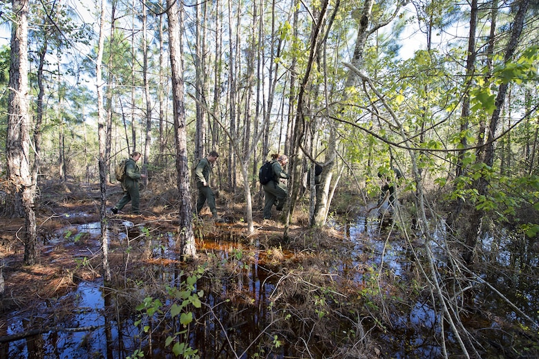 A group of 709th Airlift Squadron reservists navigate their way through the marsh, April 2, 2016, at Naval Air Station Pensacola, Fla., during their evasion portion of training. Reservists from Dover Air Force Base, Del., in the 512th Airlift Wing, conducted an off-station training exercise at Naval Air Station Pensacola, Fla., March 29 to April 3 to ensure they are current in all their deployment requirements. (U.S. Air Force photo/Capt. Bernie Kale)