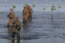 U.S. Marines with 2d Battalion, 2d Marine Regiment, Golf Company, and Filipino Marines with 4th Marine Regiment patrol through the Mangroves in Puerto Princesa during Balikatan 2016 (BK 16) on April 10, 2016.  The purpose of BK 16 is to strengthen interoperability and partner-nation capabilities for the planning and execution of military operations, and advance regional security operations.