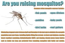 As a result of high levels of rainfall late last year and unseasonably high temperatures the past few months, experts predict mosquitos to be out in higher numbers than usual this year for the Shaw Air Force Base area. These insects have the potential to carry viruses that can be harmful to humans, and the best way to prevent the spread of these viruses is to keep the mosquito population under control. By eliminating sources of stagnant water; installing fine screens on doors and windows; wearing insect repellant; and donning closely-woven, heavy fabrics when outdoors, Team Shaw personnel can minimize their risk of coming in contact with a potentially dangerous insect-transmitted virus. (U.S. Air Force graphic by Senior Airman Zade Vadnais)
