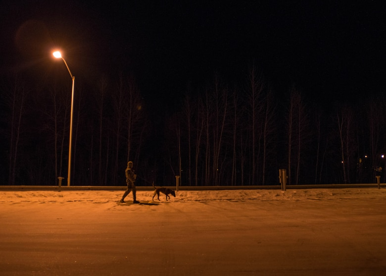 U.S. Staff Sgt. Mathis Williams, a 354th Security Forces military working dog (MWD) handler, conducts a foot patrol with MWD Oopal at Eielson Air Force Base, Alaska, March 7, 2016. Williams and his fellow MWD handlers work in below zero temperatures and face long hours of darkness while stationed in the arctic. (U.S. Air Force photo by Staff Sgt. Shawn Nickel/Released)