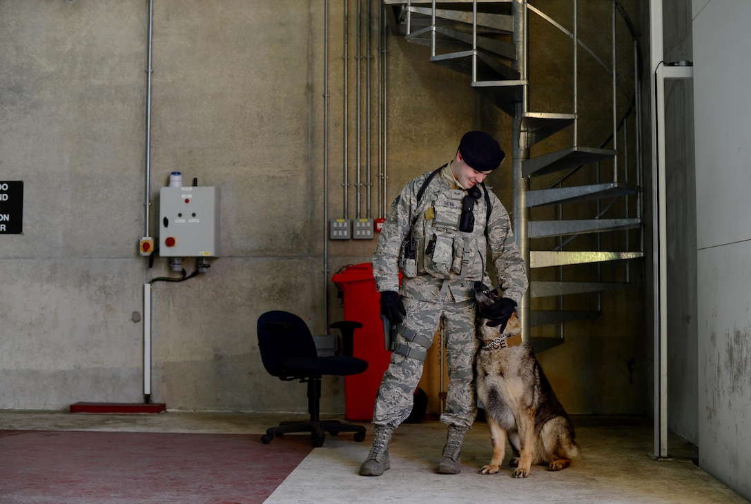 Senior Airman Bryce Bates, a 48th Security Forces Squadron military working dog handler, interacts with his teammate, Gina, before a vehicle inspection at Royal Air Force Lakenheath, England, April 11, 2016. Bates has been providing additional care for Gina after a cancerous tumor was recently removed from her mouth. (U.S. Air Force photo/Senior Airman Erin Trower)