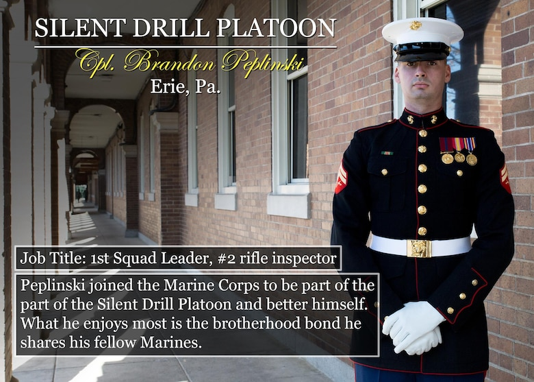 Cpl. Brandon Peplinski Erie, Pa. Job Title: 1st Squad Leader, #2 rifle inspector Peplinski joined the Marine Corps to be part of the part of the Silent Drill Platoon and better himself. What he enjoys most is the brotherhood bond he shares his fellow Marines. (Official Marine Corps graphic by Cpl. Chi Nguyen/Released)