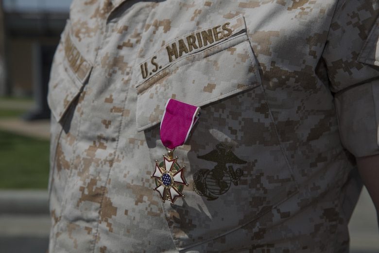 Col. Andrew R. Kennedy, former director of Tactical Training and Exercise Control Group, earned the Legion of Merit for his exceptionally meritorious conduct in the performance of outstanding service as the director of TTECG and assistant chief of staff G-3 Operations and Training during his retirement ceremony at Lance Cpl. Torrey L. Gray Field April 15, 2016. (Official Marine Corps photo by Cpl. Medina Ayala-Lo/Released)