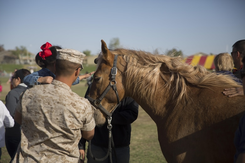 Combat Center patrons meet Ares, a horse from the Marine Corps Mounted Color Guard, during the Earth Day Extravaganza aboard the Combat Center at Lincoln Military Housing Athletic Field April 15, 2016. (Official Marine Corps photo by Cpl. Connor Hancock/Released)