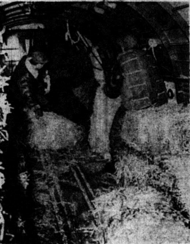 Crewman kick out another bale as hay swirls back into the plane through slipstream pressure.  Strauch (with parachute) and Ward release the 62 pound load, with assistance of Sgt. Donald Beevers, tied to ship (behind Ward). (Photo by Frank Schiro, courtesy La Grande Observer, via Eastern Oregon University Library)