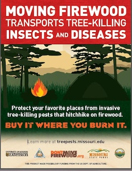 Headed for a weekend camping trip at a Corps' lake?  Please remember to acquire your firewood locally near the campground or use certified pest free firewood.  The emerald ash borer is an invasive species that is often found hitching a ride to our park areas in firewood by unknowing park visitors.  Emerald ash borers have already killed over 70 million green ash trees in the United States.  Help us prevent the spread of the emerald ash borer and other invasive tree-killing pests.