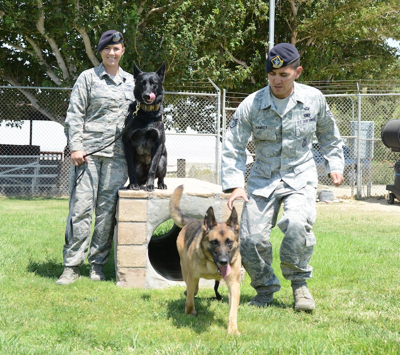 Senior Airman Grace Daniels and her partner Rolf watch as Staff Sgt. James Ramsey and Sasa run through the obstacle course at the 412th Security Forces Squadron's Military Working Dog facility here. Both 412th SFS K-9 teams were detailed to support the U.S. Secret Service for the Democratic and Republican National Conventions in Cleveland and Philadelphia. (U.S. Air Force photo by Christopher Ball)