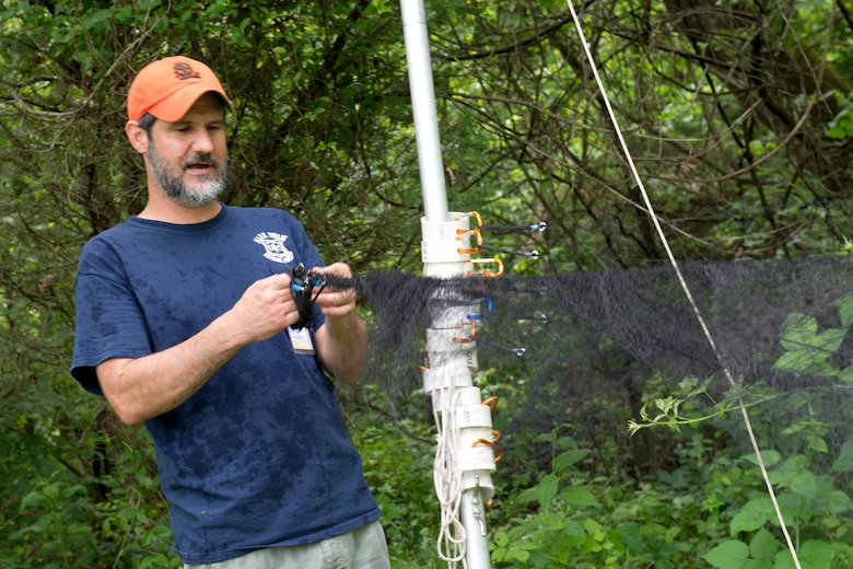 John Tipone, a lead bat biologist for HDR, sets up a fine mesh net designed to catch bats as they travel through tree-lined corridors, as part of a bat survey of the 167th Airlift Wing property, June 23. The National Guard Bureau contracted with HDR to conduct searches at several installations for the northern long-eared bat which was recently listed as a threatened species. (U.S. National Guard photos by Senior Master Sgt. Emily Beightol-Deyerle)